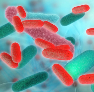 disinfezione-reti-idriche-batterio-legionella